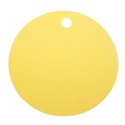 Yellow Blank 5.1cm Round Cardstock Gift Tags - 12 tags
