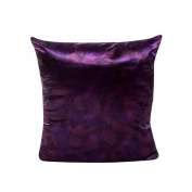 Pillow Cases,Dirance(TM) Home DecorGold Velvet 4620cm Sofa Pillow Case Waist Throw Cushion Cover