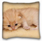 Custom Animal Pillow Cushion Case Cover One Sides Printed 41cm x 41cm suitable for Full-bed