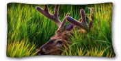 Custom Animal Pillow Cushion Case Cover One Sides Printed 50cm x 90cm suitable for X-Long Twin-bed