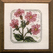 Red Campion - Counted Cross Stitch Kit 10cm x 10cm # K33