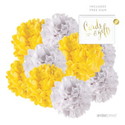 Andaz Press Hanging Tissue Paper Pom Poms Party Duo Decor Kit with Free Party Sign, Yellow and White, 8-Pack