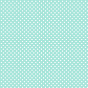 Vinyl Boutique Shop Craft Adhesive Polka Dot Medium Vinyl Sheets Adhesive Vinyl HT-0150-21
