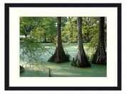Green Bayou - Solid Wood Picture Frame Art Print