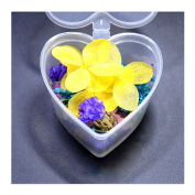 1 Box Mixed Dried Flowers Nail Art DIY Preserved Flower With Heart-Shaped Box Glass Bottle Decor #I