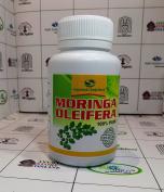 Moringa Oleifera 100% pure Direct from Manufacturer Premium grade