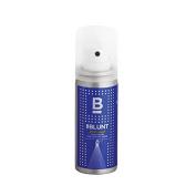 BBLUNT Mini Spotlight Hair Polish