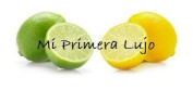 Lemon-Lime Scented Unsweetened Flavour Oil for Lip Balm and Lip Gloss Making 30ml Bottle
