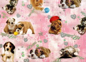 Puppies Kittens Rolled Gift Wrap Paper 2 Full Sheets 70cm x 100cm
