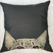 Pillow Cases,Dirance(TM) Home Decor Cute Animal Print Square Throw Sofa Bed Decoration Cushion Cover