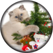 Snap button Christmas tree cat 18mm Cabochon chunk charm