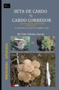 Seta de Cardo Vs Cardo Corredor [Spanish]