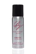 AeroTec Travel Hair Spray