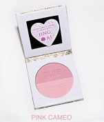 Compact Mirror & Blush Makeup Palette For Purses By Jing Ai Cosmetics - 2 Shades For Light, Medium, Dark Skin Benefit All Face Complexions Paraben Gluten & Cruelty Free Vegan Formula