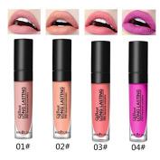 SHERUI 4pcs /lot Cosmetics Lips Make up VELVETINES Matte Lipstick Batom CASHMERE Lip Gloss wicked Lipgloss