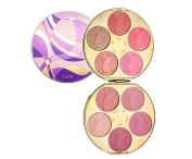 Tarte Works of Tarte Colour Wheel Amazonian Clay Blush Palette