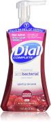 Dial Complete Foaming Antibacterial Hand Wash, Antioxidant Power Berries, 220ml