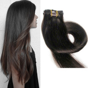 TheFashionWay Brazilian Human Hair Extensions Clip in Silky Straight Weft Remy Virgin Hair