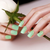 ArtPlus Geisha Green False Nails Set French Manicure Full Cover Medium Length with Glue