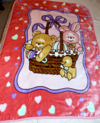 NEW KOREAN STYLE BUNNY RABBIT & TEDDY BEAR IN A BASKET PLUSH SOFT MINK GIRL BABY BLANKET 140cm X 100cm