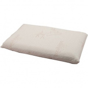 Toddler Pillow with Bamboo Pillow Case
