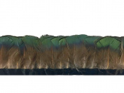 Pheasant Feathers, Iridescent Green Bronze Golden Pheasant Tippet Feather Trim - 1 Yard