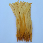 Sowder Golden Yellow Rooster Coque Tail Feathers 28cm - 36cm Lengh Pack of 50