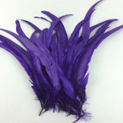 Sowder Purple Rooster Coque Tail Feathers 28cm - 36cm Lengh Pack of 50