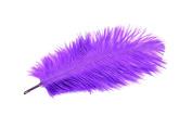 24 Pieces Purple Ostrich Feather Plumes 15cm - 20cm Long - 17 Colours Available