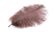 24 Pieces Brown Ostrich Feather Plumes 15cm - 20cm Long - 17 Colours Available