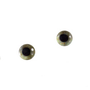 6mm Small Eagle Glass Eyes Doll Irises for Art Polymer Clay Taxidermy Sculptures or Jewellery Making Set of 2
