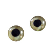 10mm Tan Eagle Glass Eyes Doll Irises for Art Polymer Clay Taxidermy Sculptures or Jewellery Making Set of 2