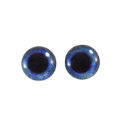 10mm Blue Raven Glass Eyes Doll Irises for Art Polymer Clay Taxidermy Sculptures or Jewellery Making Set of 2