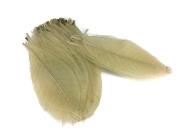 Skeleton Leaves 18cm 100 pcs Natural Rubber Leaves Flower Making Floral Scrapbook Craft Wedding Card
