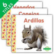 Animales Comunes (Everyday Animals ) (Set) (Animales Comunes  [Spanish]
