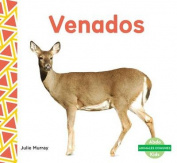 Venados (Deer ) (Animales Comunes  [Spanish]