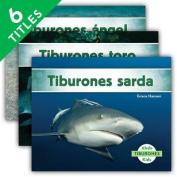 Tiburones (Sharks Set 2) (Set) (Tiburones  [Spanish]