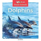 Dolphins (Ocean Animals)