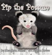 Pip the Possum