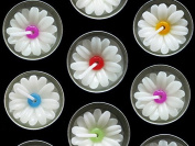 Fancy Daisy Tealight Candles 10 Pieces Per Pack.