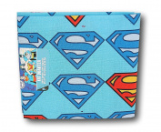 DC Comics Superman Fat Quarter