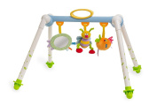 Taf Toys Take-to-Play Baby Gym