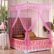 NET stainless steel floor bold Princess mosquito nets to the Court three door nets