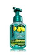 * California Citrus & Sunshine * Bath & Body Works Gentle Foaming Hand Soap