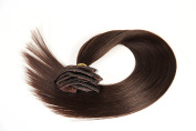 Arling 50cm 100% Unprocessed Silky Straight Human Remy Hair Clip in Hair Extensions 10 pcs Dark brown