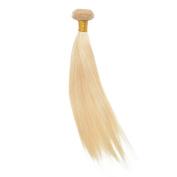 ABOLISS Hair Bundles Straight Hair Extensions Unprocessed, Honey Blonde Brazilian Hair, Remy human hair weave,6a virgin hair