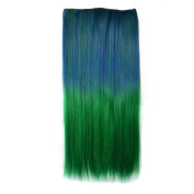 Stepupgirl Hair Extension, 60cm Dark Blue to Grass Green Ombre Colour Straight Synthetic Full Head Clip in Hair Extension