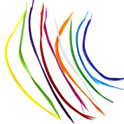 10PCS 20-25cm Goose Biot Feathers For Millinery Crafts And Fly Tying Mixed Colour