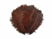 Ostrich Feathers | Ostrich Drab Wholesale Feathers (Bulk) - 0.2kg Dark Brown, 23cm - 33cm
