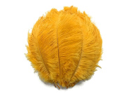 Ostrich Feathers | Ostrich Drab Wholesale Feathers (Bulk) - 0.2kg Gold, 23cm - 33cm